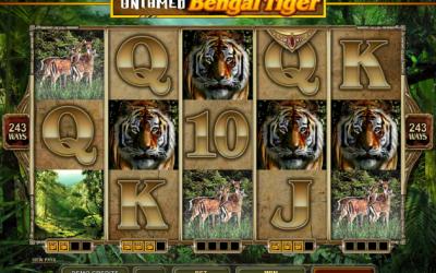 Feel the Untamed Bengal Tiger Slot